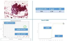how to prepare cytological samples for molecular testing journal