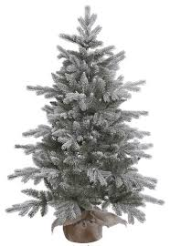 frosted pine tree traditional trees by