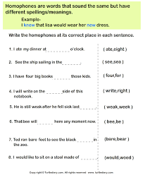 choose the homophone for each sentence worksheet turtle diary