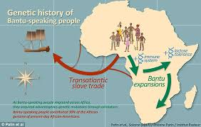 africa map study genetic study reveals how africans descended from a daily