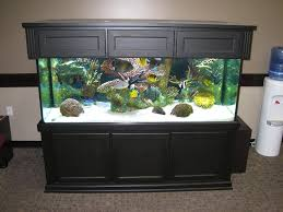 Fish Tank Designs For Home Home Design - Home aquarium designs