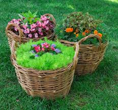beautiful basket of flowers in the garden landscape stock photo