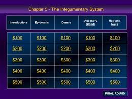 the integumentary system 100 200 300 400 500 100 100 100