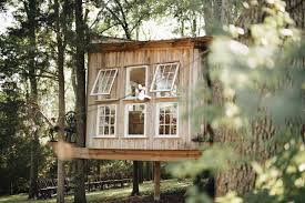 airbnb nashville tiny house the fox house light filled home in the trees treehouses for