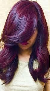 brown plum hair color simply organic beauty winter plum hair color