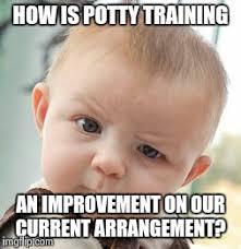 Potty Training Memes - skeptical baby meme imgflip