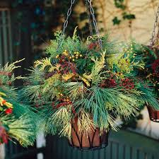 christmas hanging baskets with lights lights bows greens decking your outdoor halls for christmas