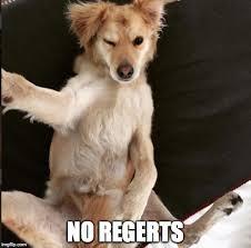 Sexy Dog Meme - no regerts imgflip