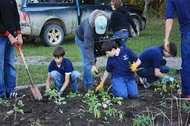 planting natives native plant gardens eaton conservation district