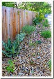 succulents and more rock mulch for desert garden bed