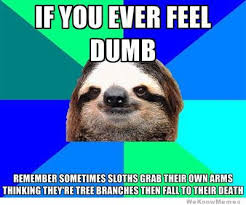 Funny Sloth Pictures Meme - 30 greatest sloth memes gifs and comics weknowmemes