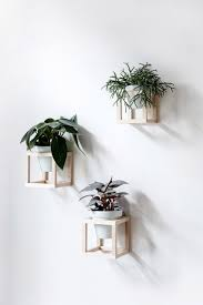 plant stand wall hanging indoor