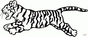 beautiful tiger coloring page for your book daniel printable pages