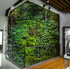 the benefits of a green wall vertiss