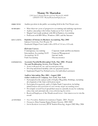 Senior It Auditor Resume Internal Resume Template Free Resume Example And Writing Download