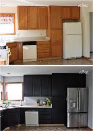 Diy Gel Stain Kitchen Cabinets Kitchen Ideas Home Design Awesome Stain Kitchen Cabinets Ideas