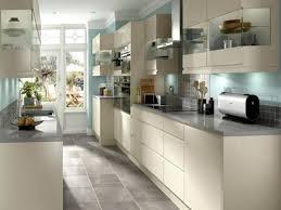 Narrow Galley Kitchen Open Plan Kitchen And Living Room Designs Galley Kitchen Designs
