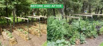 diy straw bale gardening diy educatordiy educator