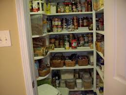 kitchen closet shelving ideas small closet pantry designs pantry the pantry closets