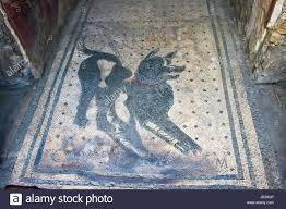 dog mosaic stock photos u0026 dog mosaic stock images alamy