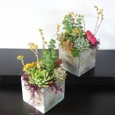 succulent centerpieces san diego delivery only succulents