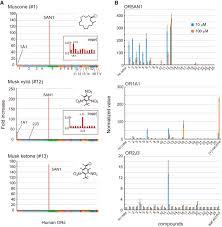 ligand specificity and evolution of mammalian musk odor receptors