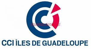 chambre de commerce et d industrie ile de cci des îles de guadeloupe les élections validées économie en