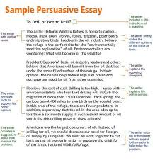 essay help pros FAMU Online Term paper writing help