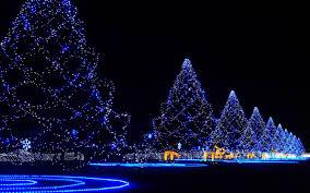 Christmas Trees With Lights Christmas Trees Wallpapers Christmas Lights Decoration