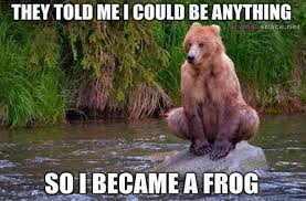 Funny Animal Meme Pictures - they told me i could be anything so i became a frog funny animal meme