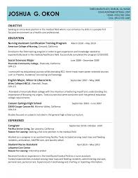 Sample Resume Objectives For Dentist by Winsome New Resume Model Format 25 Best Ideas About Job Dental