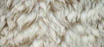 How To Clean Wool Area Rugs by How To Prevent A Wool Area Rug From Shedding Doityourself Com