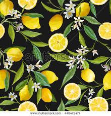 seamless lemon pattern seamless floral pattern lemon fruits background stock vector