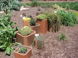the consummate gardener florida gardening and more month by