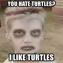 I Like Turtles Meme - i like turtles every day meme generator