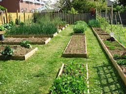Best Soil For Vegetable Garden In Raised Bed by Raised Bed Vegetable Garden Layout Plans Design A Vegetable Garden