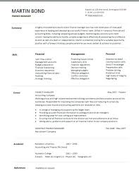 financial curriculum vitae examples executive resume example