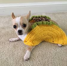 Taco Costume Taco Pet Costume Taco Cat Costume Taco Costume For Dogs