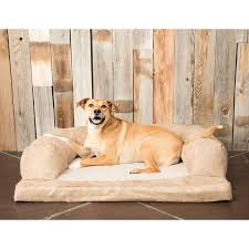 hidden valley baxter orthopedic dog bed and couch small to extra
