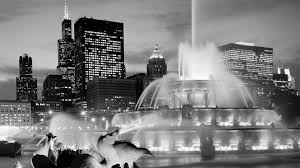 Hi Can Bed by Faq Hi Chicago
