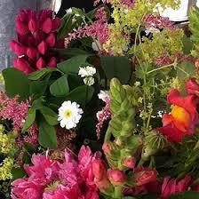 Bulk Flowers Diy Bulk Flowers Julia U0027s Flower Garden