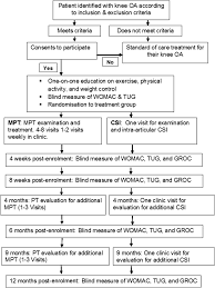 a multicentre randomised 1 year comparative effectiveness