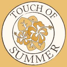 touch of summer 55 reviews spray tanning 2878 e paul ave
