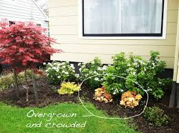 a home in the making renovate front yard landscape updates