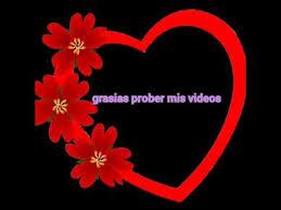imagenes flores relajantes relajantes imágenes de rosas flores youtube