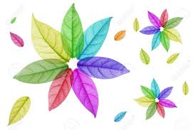 colorful designer design of colorful leaf in white background stock photo picture and