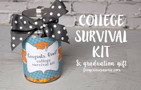 highschool graduation gifts college survival kit for high school graduation gift