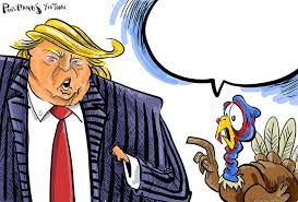 Thanksgiving Bird Thanksgiving Bird Talks Turkey With Opinion Host