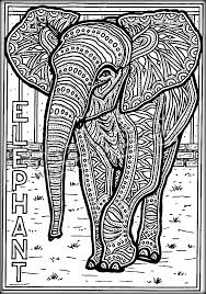realistic elephant coloring pages for toddlers color zini