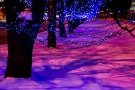 looking for blue icicle lights we pick 5 of the best